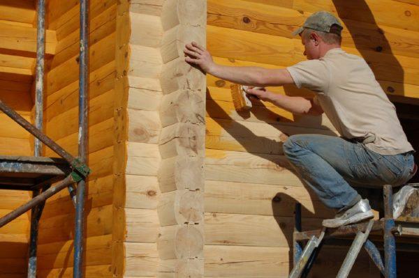 Перед утеплением необходима обработка дерева биозащитными средствами