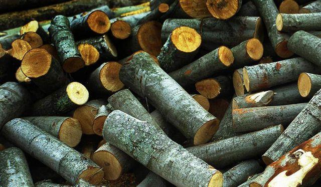 Осиновые дрова не дадут хорошего жара, зато помогут очистить дымоход от сажи