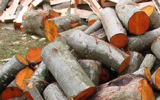 Ольховые дрова выдает совершенно необычный цвет среза
