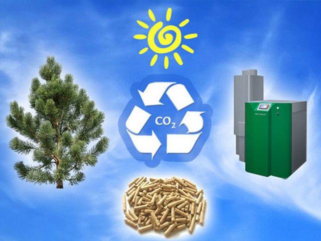 При сгорании пеллет в атмосферу выбрасываются неопасные вещества, участвующие в естественном обмене