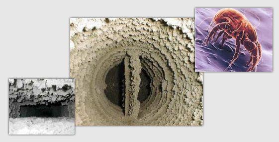 О необходимости очистки вентиляции