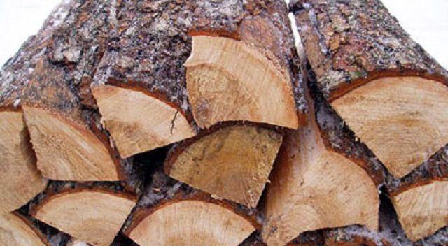 Древесину хвойных пород использовать для отопления жилья нежелательно