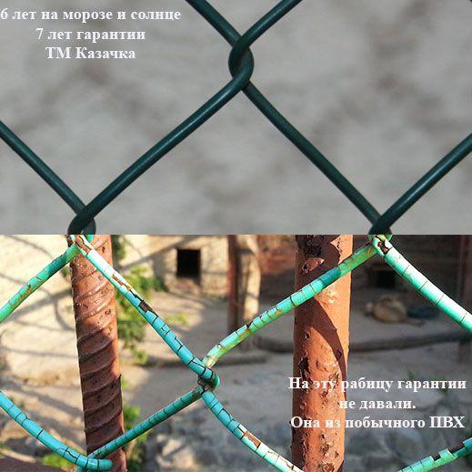 Сравнение сетки Рабица ТМ Казачка с другими