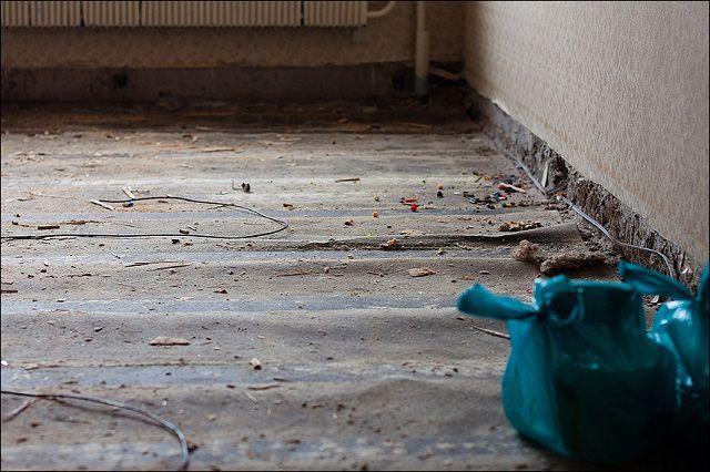 """Некачественная уборка  - прямая причина """"шумных"""" ламинированных полов"""
