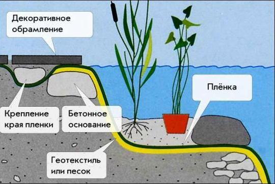 Схема устройства пруда с гидроизоляцией