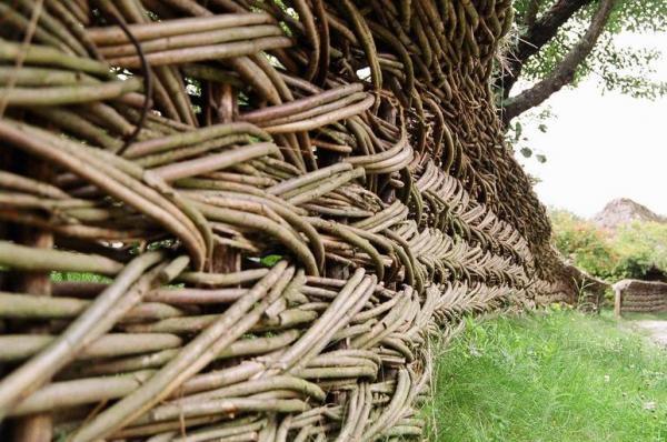 Плетеный забор из гибкой ивовой лозы своими руками