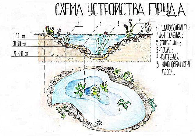 В начале работы - составление эскиза и чертежа будущего водоема