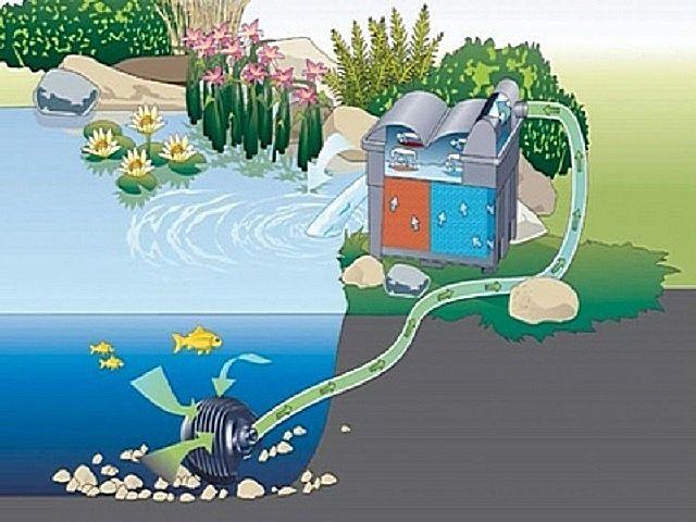 Современные фильтры совмещают функции и обычной фильтрации, и биологической очистки
