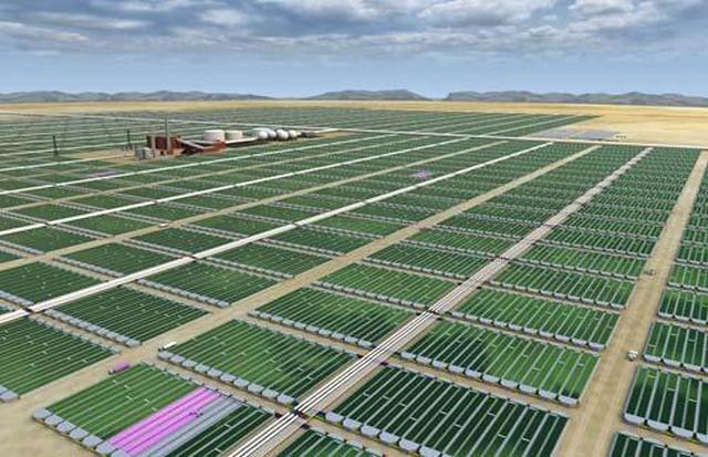 Так будут выглядеть заводы по производству биодизеля из зеленых водорослей