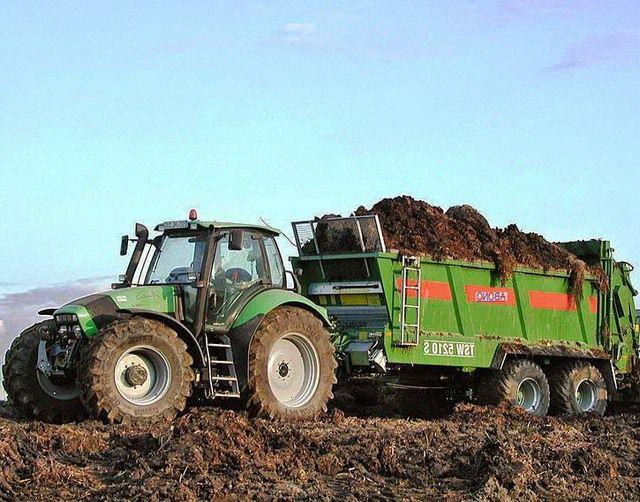 Сырье для производства биотоплива часто буквально валяется под ногами