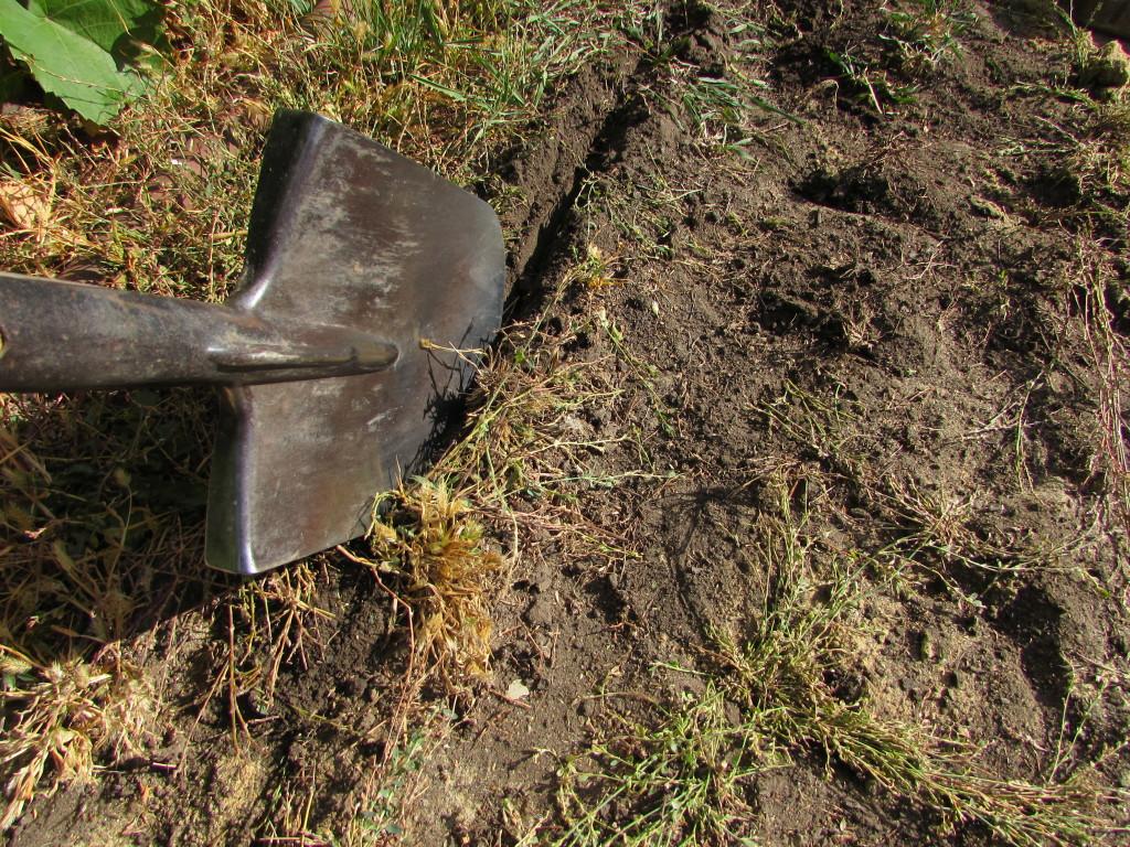 Выемка слоя почвы