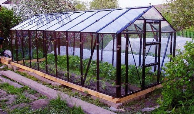 Традиционно для создания прозрачных стен и крыши широко применяется стекло