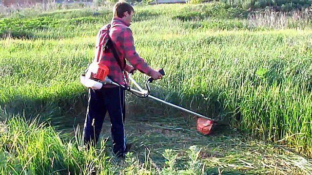 Бензиновый триммер способен справиться с густыми жесткими зарослями травы