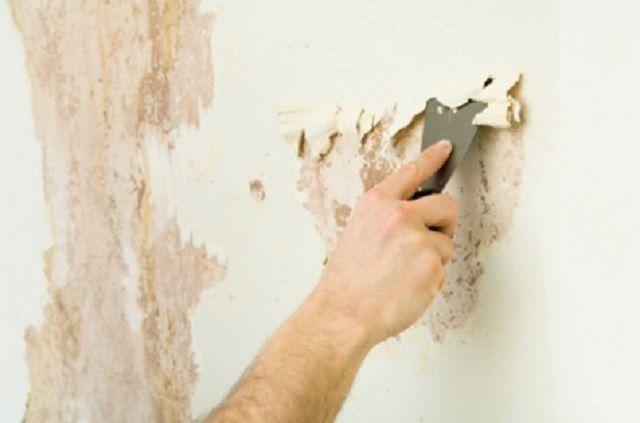 Очень часто отслоившуюся бумажную подложку приходится буквально счищать со стены