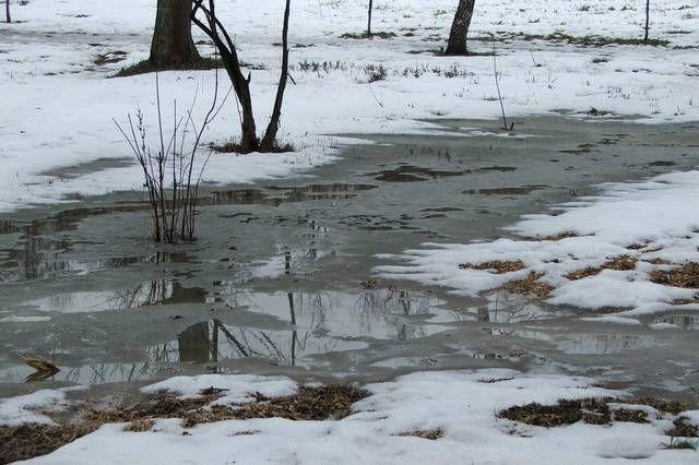Указанные в расчетах минимальные температуры стоят буквально одну-две недели, а так морозы в течение зимы бывают вполне «щадящими», а нередко и вообще отступают, вплоть до наступления настоящих оттепелей