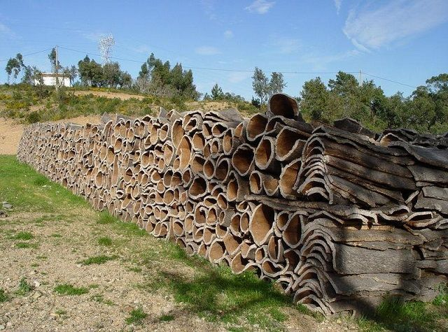 Сушка заготовленной пробковой коры производится только в естественных условиях, на свежем воздухе