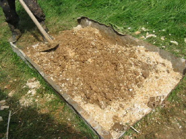 Замешивание «рабочей» утеплительной смеси на базе древесных опилок
