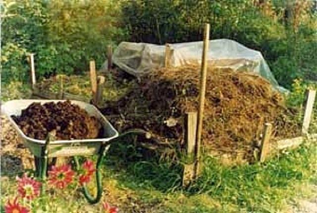 Готовить компост можно и открытым способом, выкладывая растительные отходы в небольшой стожок