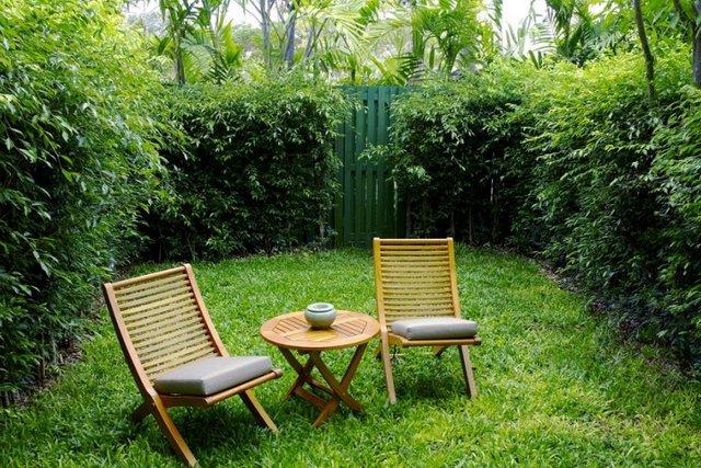 На обычном парковом газоне вполне можно организовать зону для комфортного отдыха членов семьи – лужайка не боится умеренных нагрузок