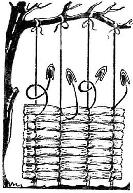 Схема показывает, как можно самому сплести камышовый мат