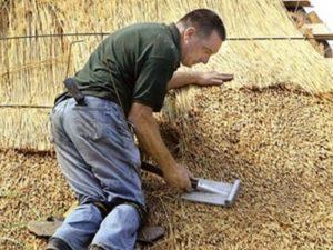 Крыша из камыша своими руками: как заготовить камыш и сделать крышу самостоятельно