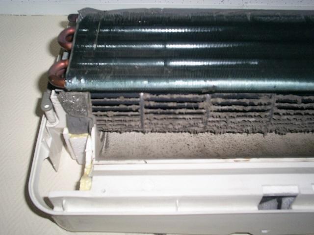 Хотим мы этого, или нет, но в воздухе всегда содержится взвешенная пыль, к которой могут добавиться пух и пыльца от растений. Все это скапливается в фильтрах кондиционера.
