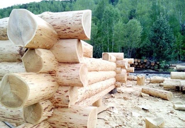 Вековые традиции строительства – здания из вручную обработанных бревен