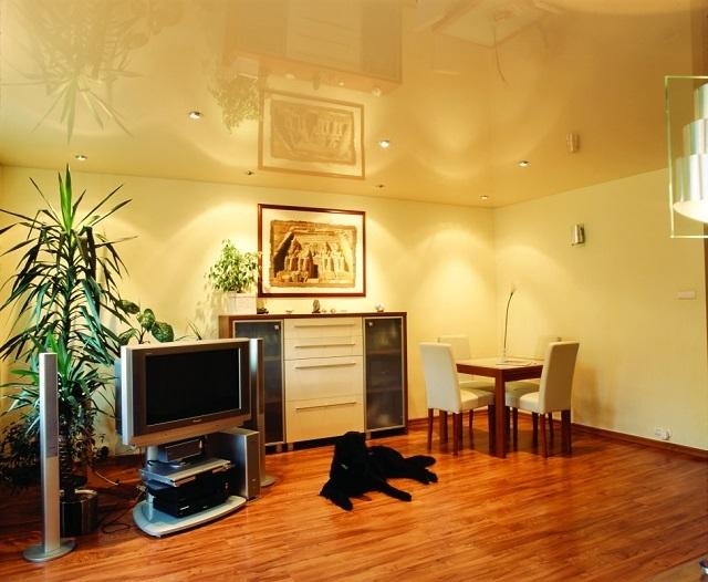 Правильное сочетание оттенков отделки стен и потолка несколько сглаживают линию перехода между ними, что дает эффект расширения пространства. Помогает в этом и отражающие свойства потолочной поверхности.