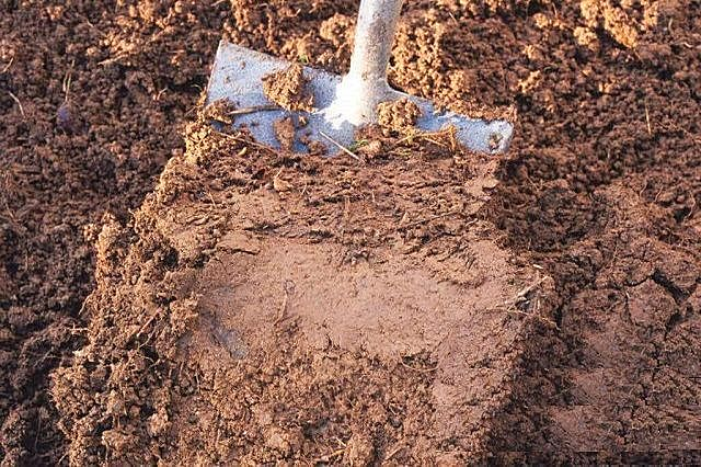 Почти что чистая глина – далеко не самый оптимальный вариант для фундамента.