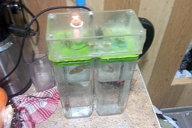 Ионизатор воды своими руками