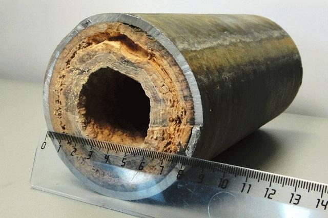 Отрезок стальной трубы из системы, которая длительное время не подвергалась очистке.