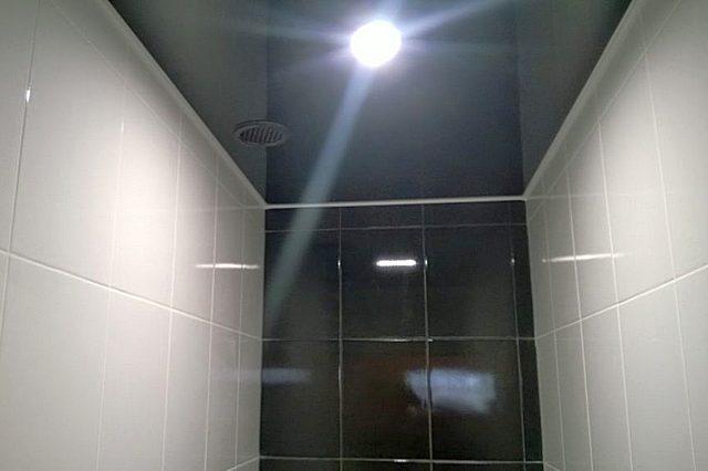 Потолок в туалете невелик по площади, так что можно выбирать любую понравившуюся практичную и красивую отделу – значительных расходов это не повлечет
