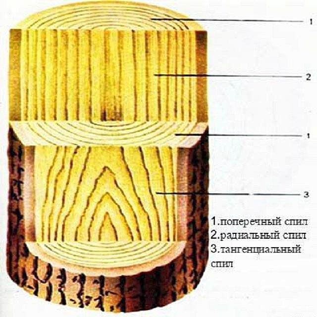 Фактурный рисунок при различных типах распиловки бревна.