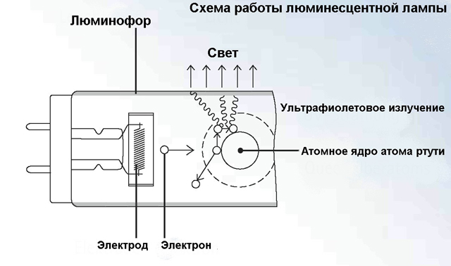 Люминесцентная лампа и процессы в ней происходящие