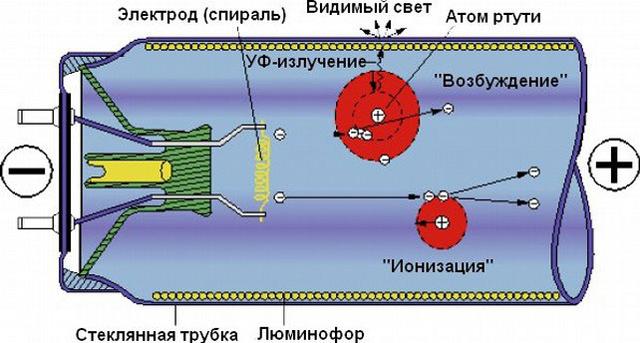 Процессы, происходящие внутри люминесцентной лампы
