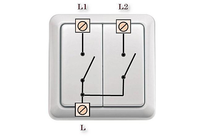 Двухклавишный выключатель со спаренным входом фазы и двумя раздельными выходами