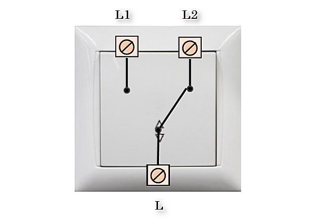 Фазный входной контакт постоянно замкнут с одним из выходных контактов