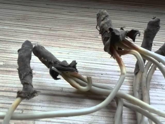 Низкое качество соединений проводов в распределительной коробке очень часто приводит к искрению, обгоранию изоляции и коротким замыканиям.
