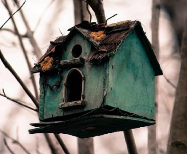 Древесные композитные материалы – удобны в работе, но недолговечны и небезопасны для птиц. Ни снимке – расслоившиеся стенки скворечника, изготовленного из ДСП и фанеры. Вряд ли такой домик привлечет птиц.
