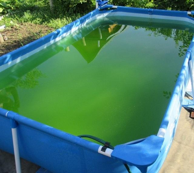 Без очистки вода в бассейне быстро загрязняется, в ней размножаются микроорганизмы, она приобретает зеленый цвет и неприятный запах. Принимать водные процедуры в такой воде и неприятно, и опасно для здоровья человека.