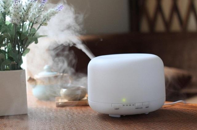Увлажнитель воздуха создаст комфортный микроклимат не только для жильцов квартиры, но и для растений.