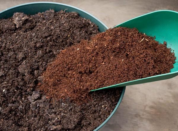 Стоит заранее подготовить почвенную смесь для выращивания лука
