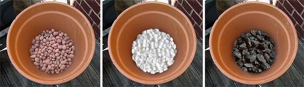Дополнительно помогут растению правильно развиваться, формировать бутоны дренажный слой, который располагается на дне посадочной ямы, а также мульчирование