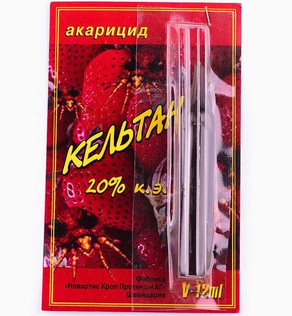 Препарат «Кельтан» поможет избавиться от лукового клеща