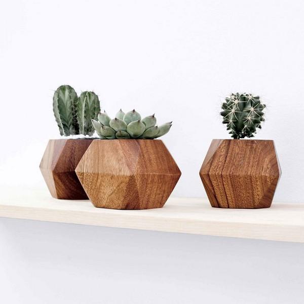 Если растения помещать в деревянные горшки, последние могут от обильного полива начать темнеть и гнить