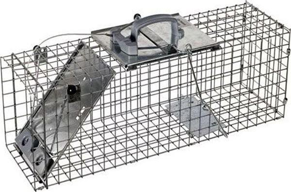 Для избавления от крыс можно использовать специальные устройства – крысоловки, которые могут быть механическими и электрическими