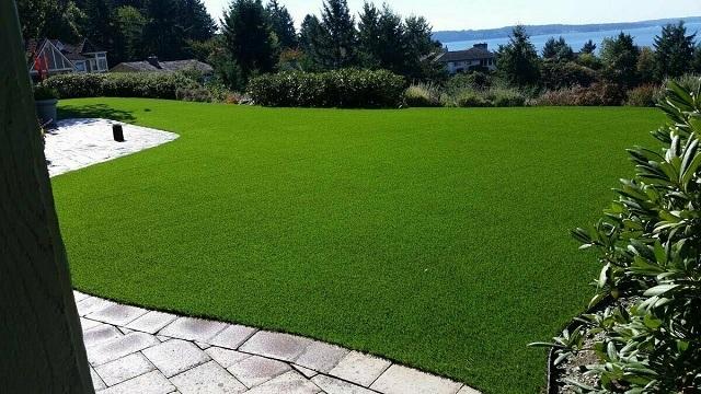 Партерный газон выполняет декоративную роль. Только ее – но на высшем уровне!