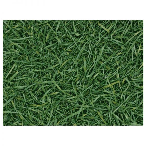 Линолеум бытовой IVC Bingo Grass 025