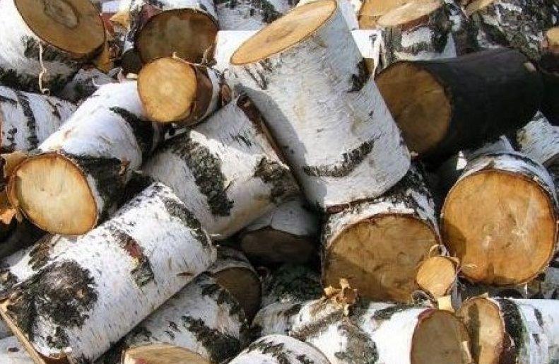"""Близкие к идеалу по характеристикам березовые дрова. Недостаток - довольно быстро """"стареют"""""""