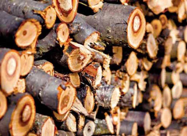 Дрова из плодовых деревьев неразумно просто сжигать в печке - они отлично подойдут для копчения или приготовления блюд на углях